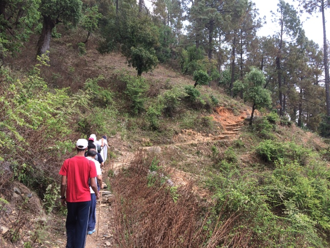 satsangs on the road to babaji cave